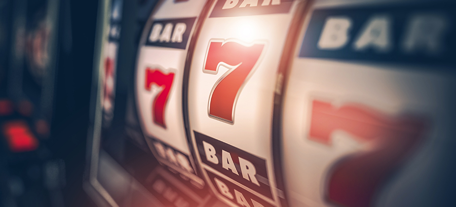 casino bus images